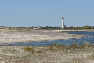 Cape May Lighthouse DSC_0576