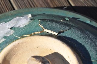 Cracked clay birdbath bowl DSC_2090
