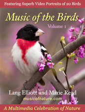 Music of the Birds cover