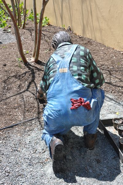 Grounds for Sculpture DSC_0059