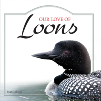 Our Love of Loons